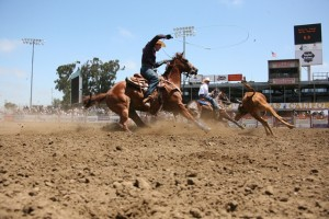 CA Rodeo 2012 -Web