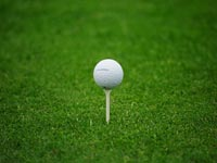 Golf-Ball-Grass-Widescreen-Wallpaper