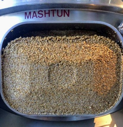 The mash before brewing beer at Peter B's