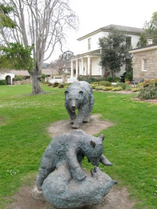 Bears at Colton Hall