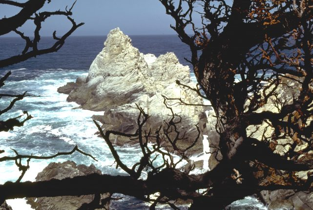 Point Pinos