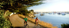 Bicycling Your Way Through Monterey